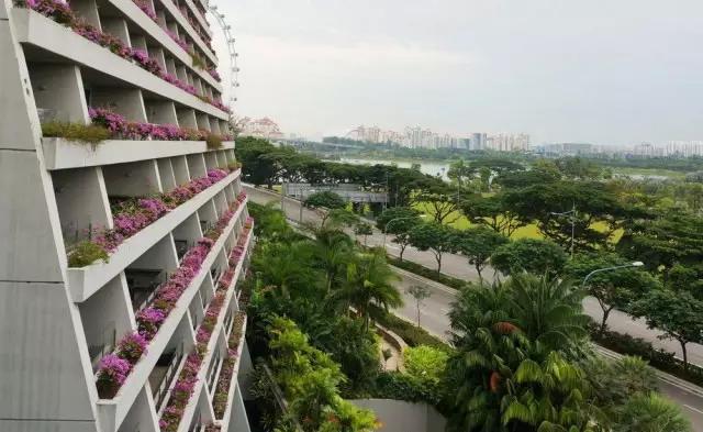 金沙酒店阳台绿化(角度二)