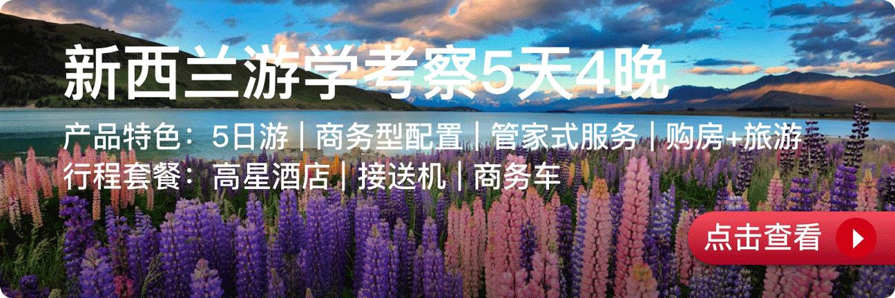 项目详情链接-copy-20.png